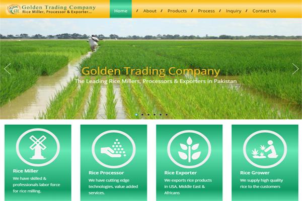 golden-trading-company - NVJ Developers & Designers