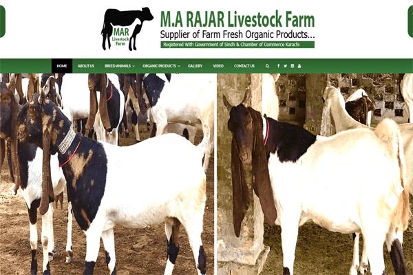 M.A Rajar Livestock Farm
